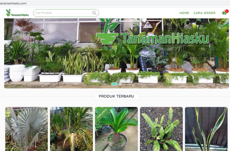 Jasa Pembuatan Website di Parung